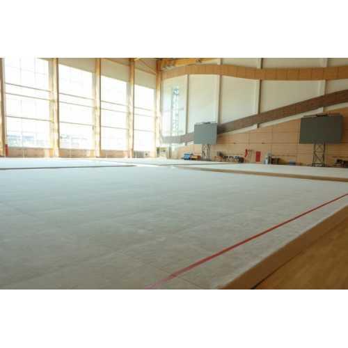 Ковер гимнастический 14х14х0,005 м
